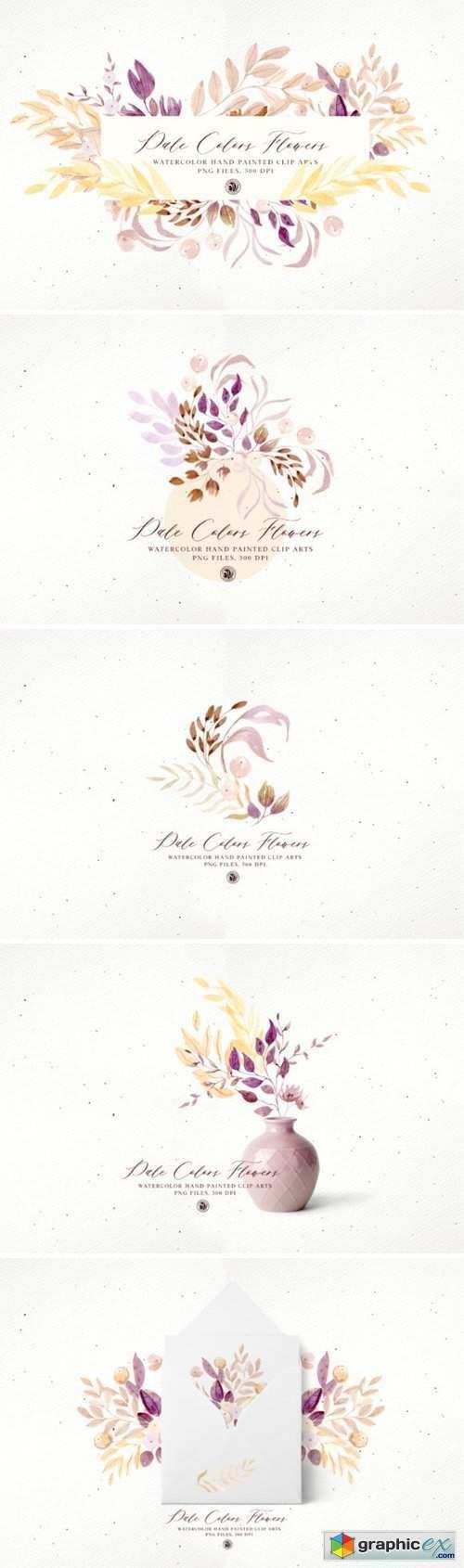 Pale Colors Flowers