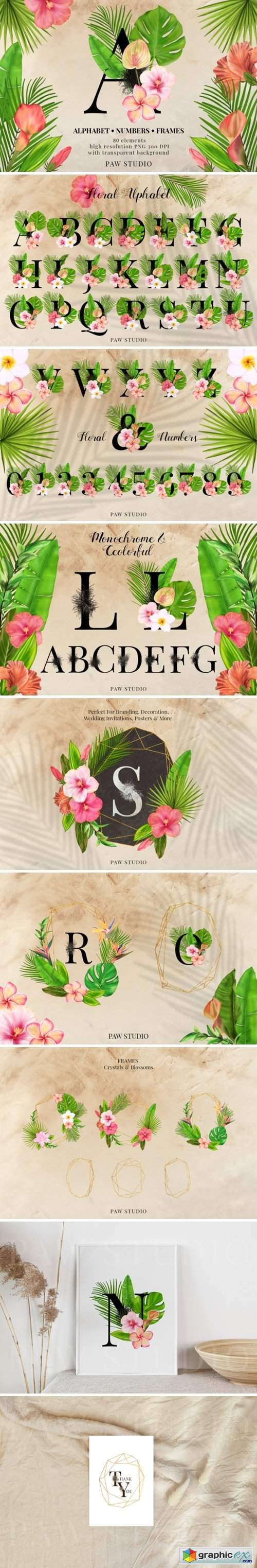 Tropical Graphic Letters. Floral Frames