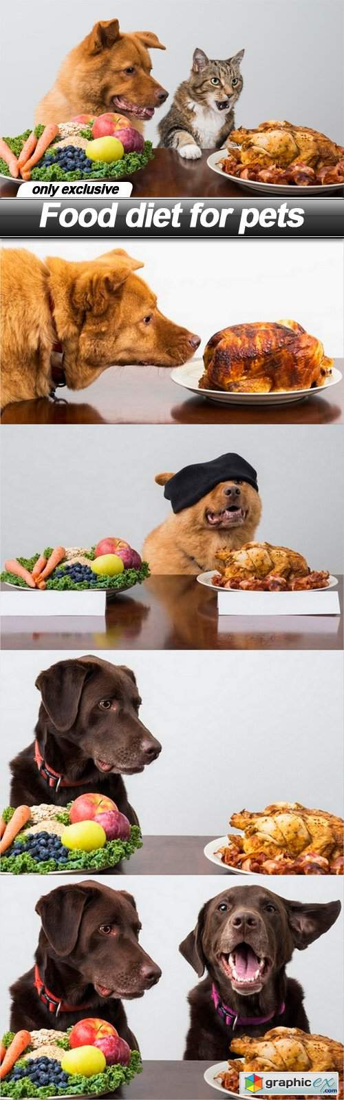 Food diet for pets - 5 UHQ JPEG