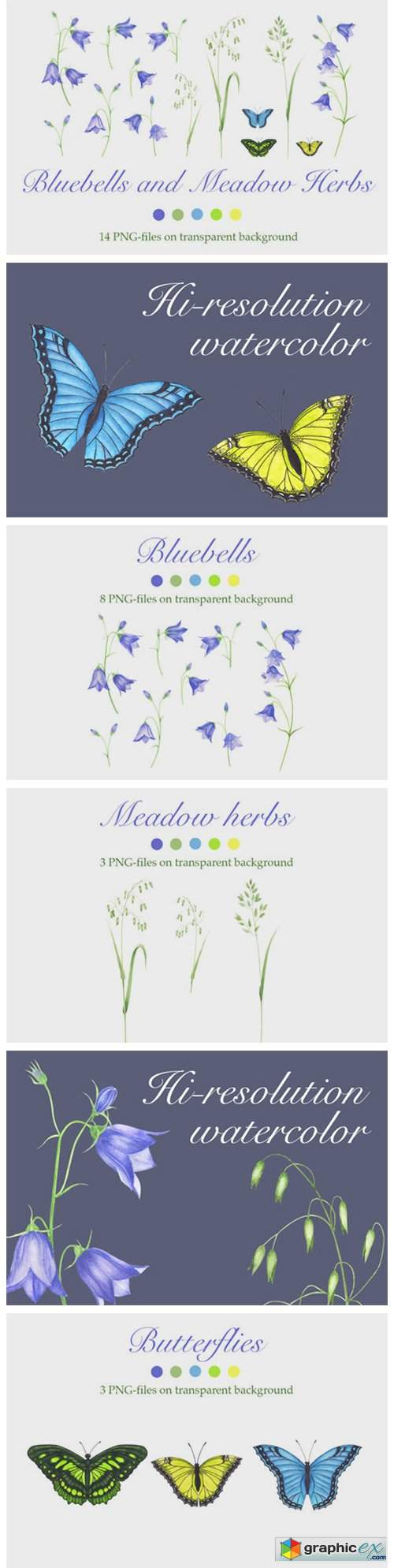 Bluebells and Meadow Herbs