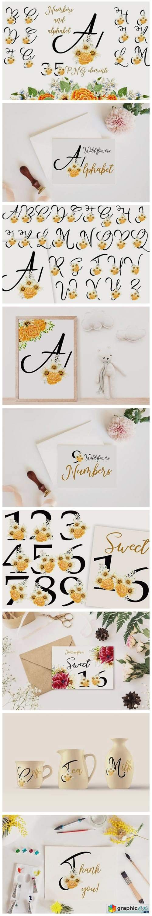 Wild Flowers Alphabet and Numbers