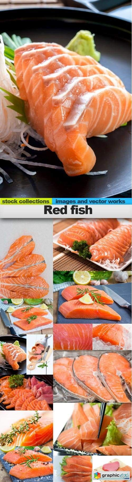 Red fish, 15 x UHQ JPEG