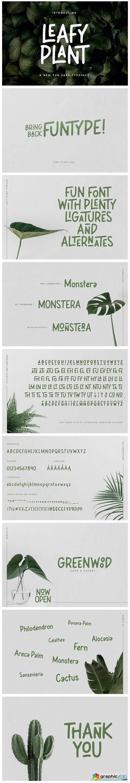 Leafy Plant Font