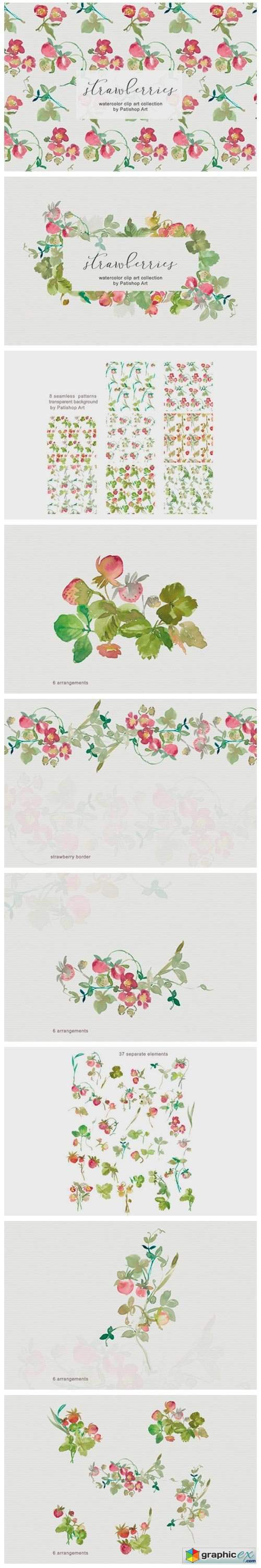 Watercolor Strawberry Clipart Collection