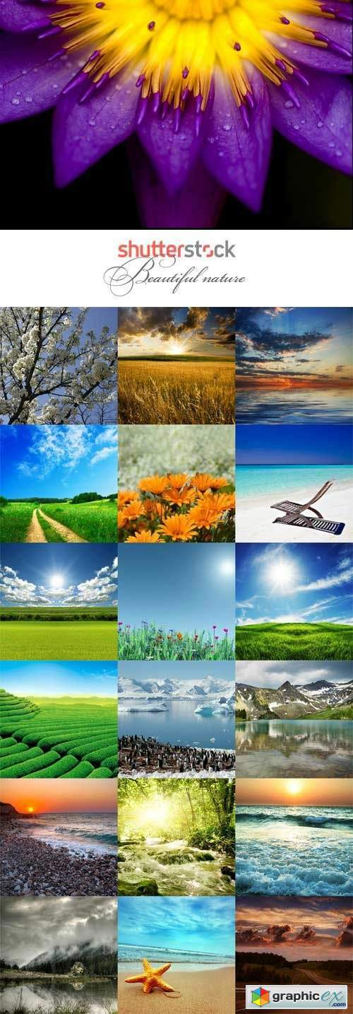 Beautiful nature raster graphics