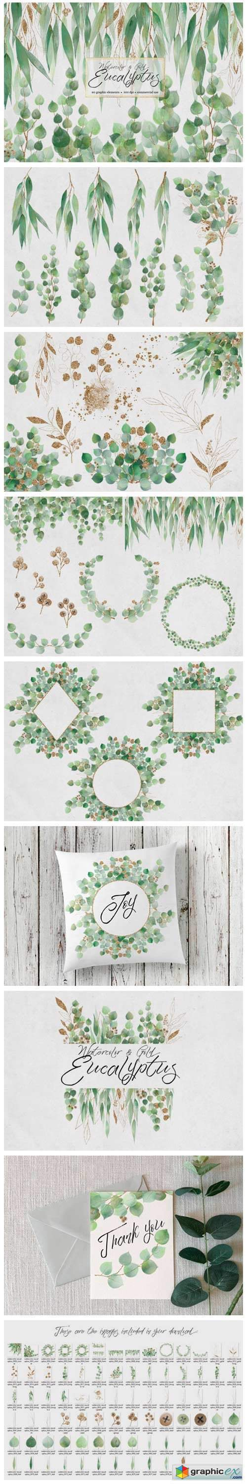 Watercolor and Gold Eucalyptus Clipart