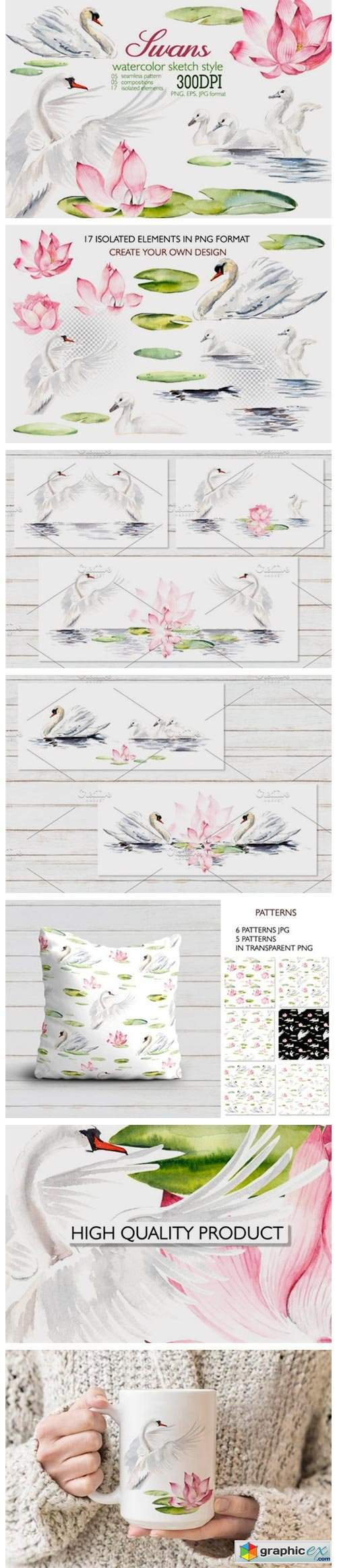 Watercolor Swans