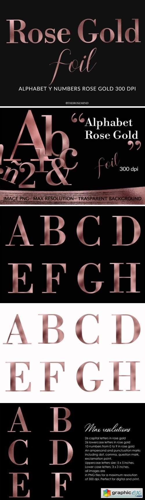 Alphabet and Numbers Rose Gold Foil
