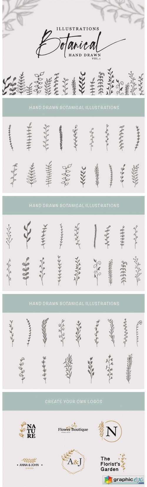 Hand Drawn Botanical Illustrations Vol.1