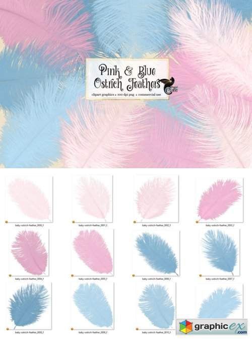 Pink and Blue Ostrich Feathers Clipart