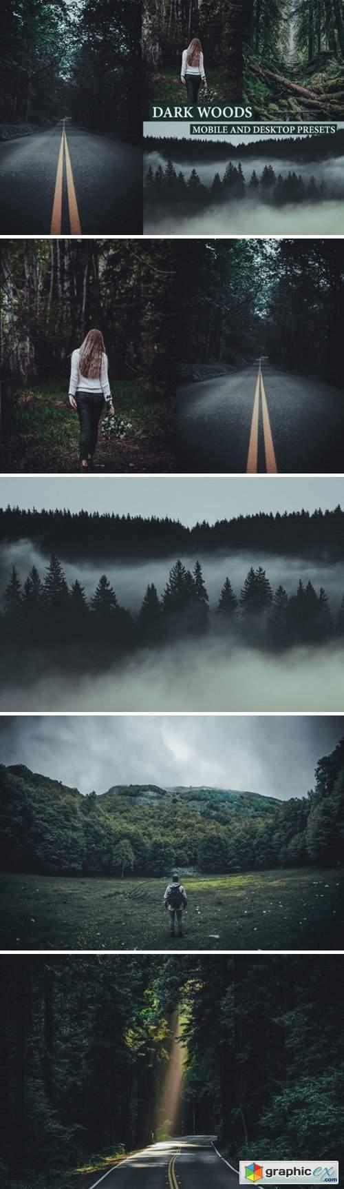 Cinematic Dark Woods Lightroom Presets