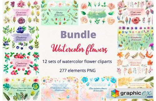 Bundle. Watercolor Flowers. Clipart