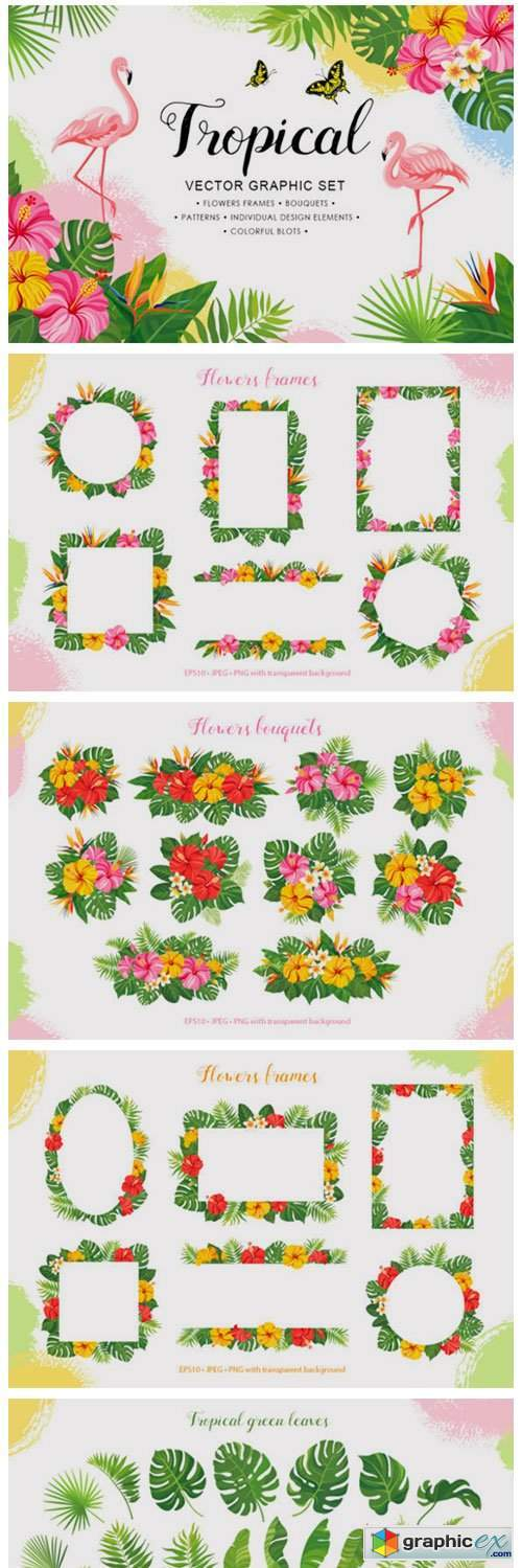 Tropical Vector Graphic Set