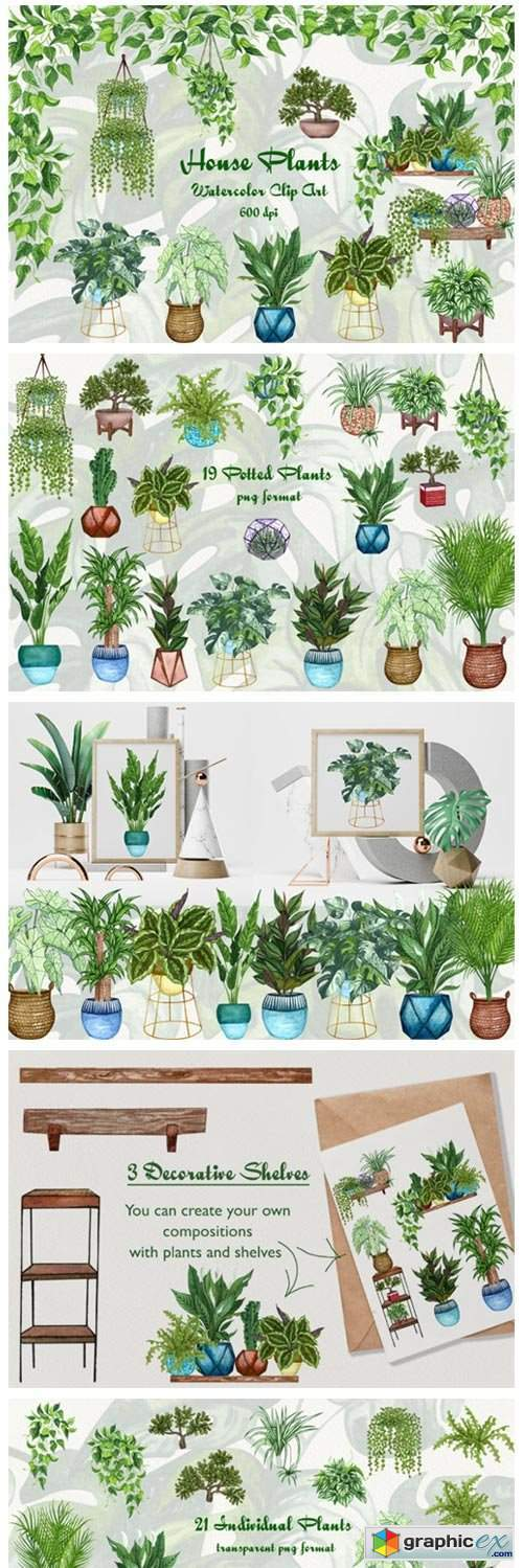 House Plants Watercolor Clip Art