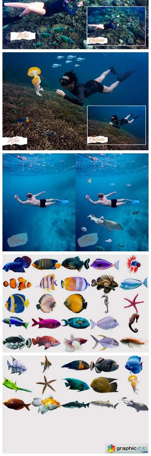 40 Sea Fish Overlays
