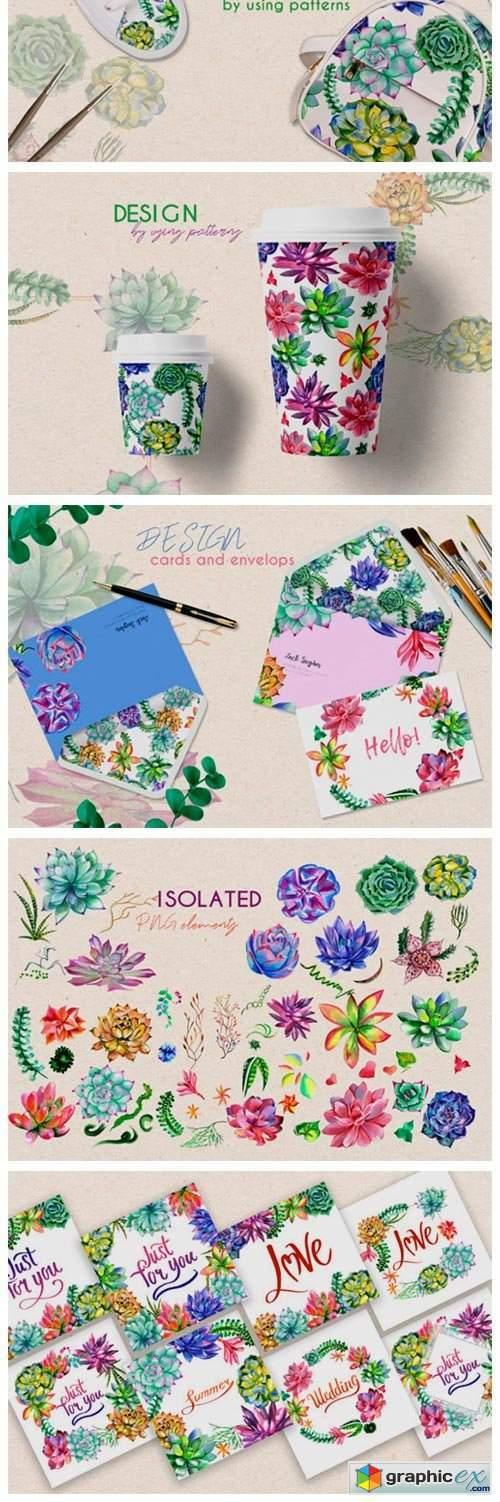 Succulent Plant PNG Watercolor Set