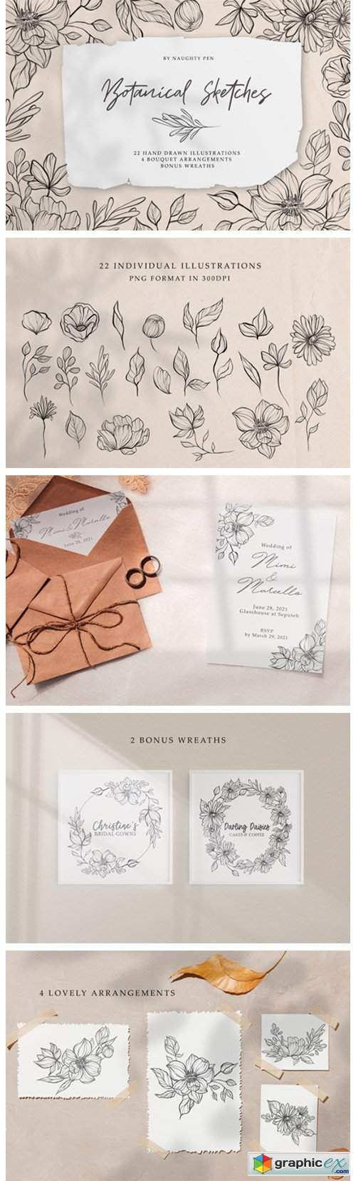 Botanical Sketches Floral Line Art