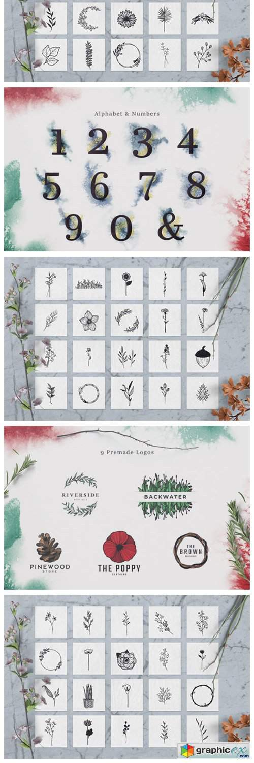 100 Hand Drawn Elements Floral