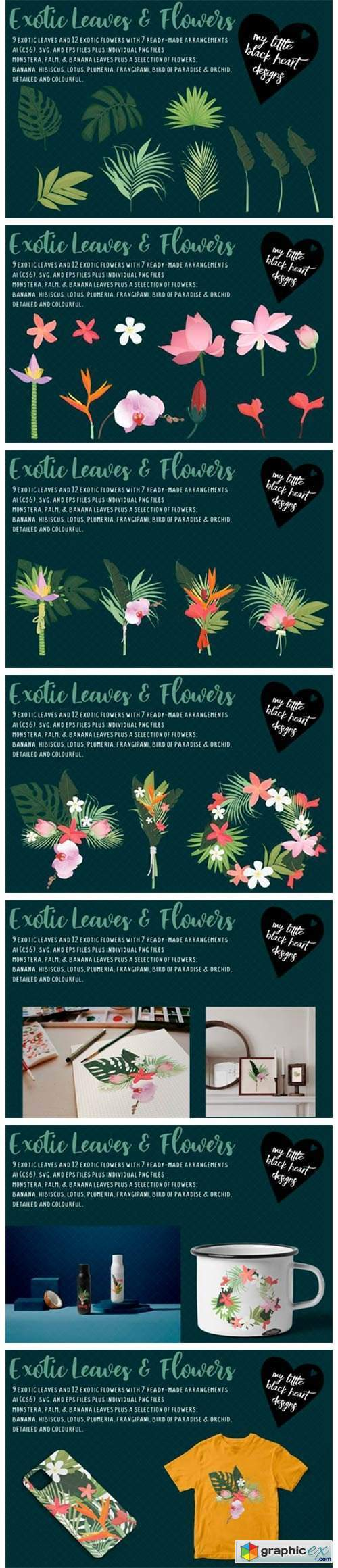 Exotic Leaves and Flowers