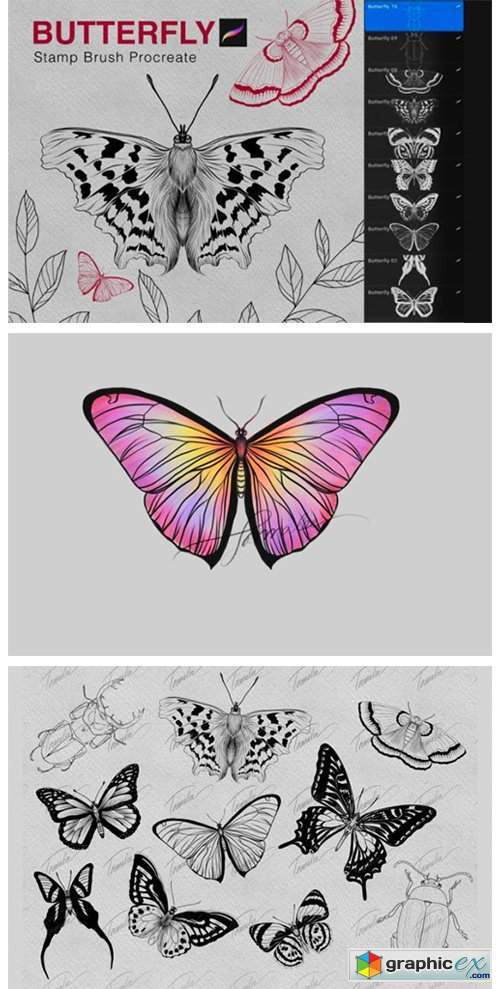 Butterfly Procreate Stamps Brush