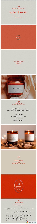 Wildflower   Handwritten Font