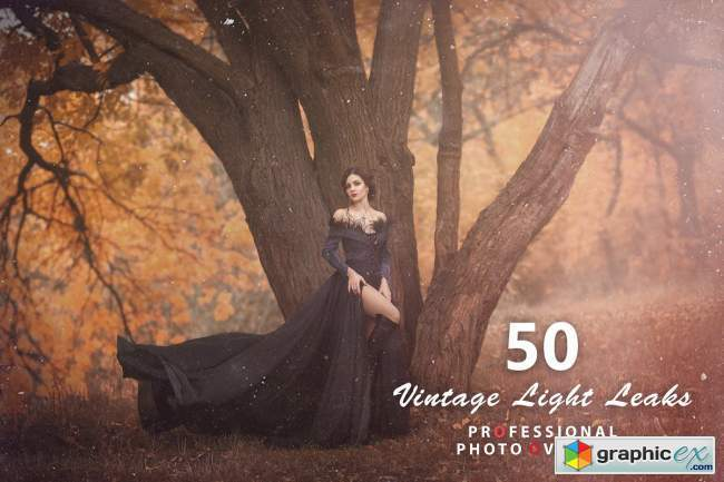 1000+ Realistic Photo Overlays