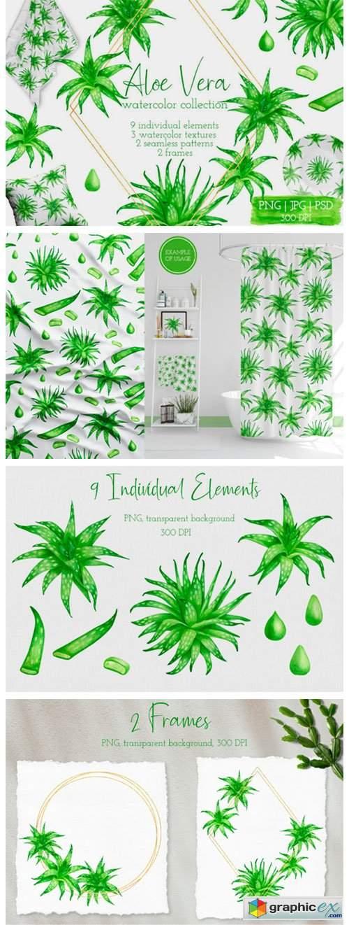 Aloe Vera Watercolor Succulent Clipart
