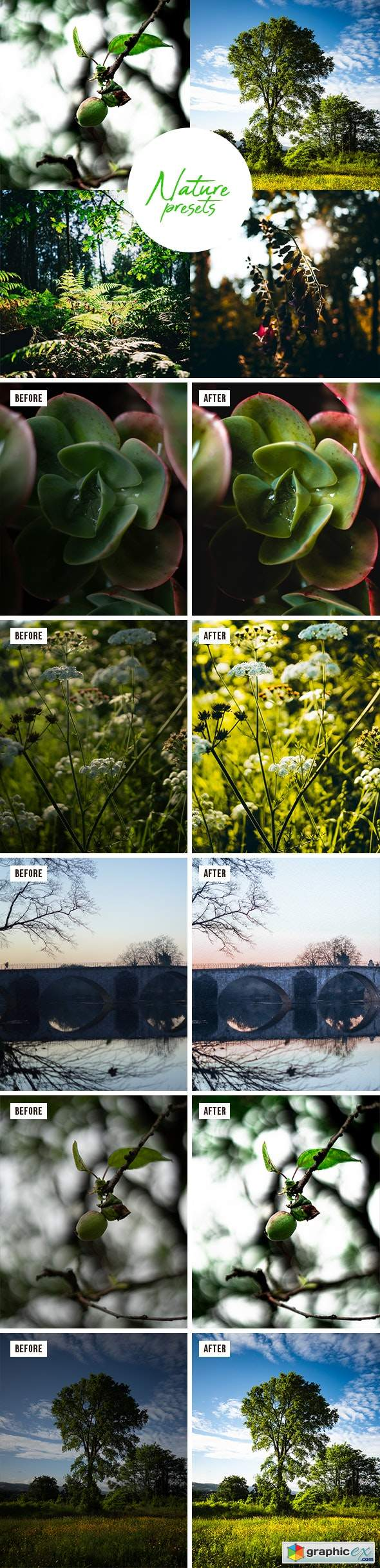 Professional Nature Lightroom Preset (Mobile & Desktop)
