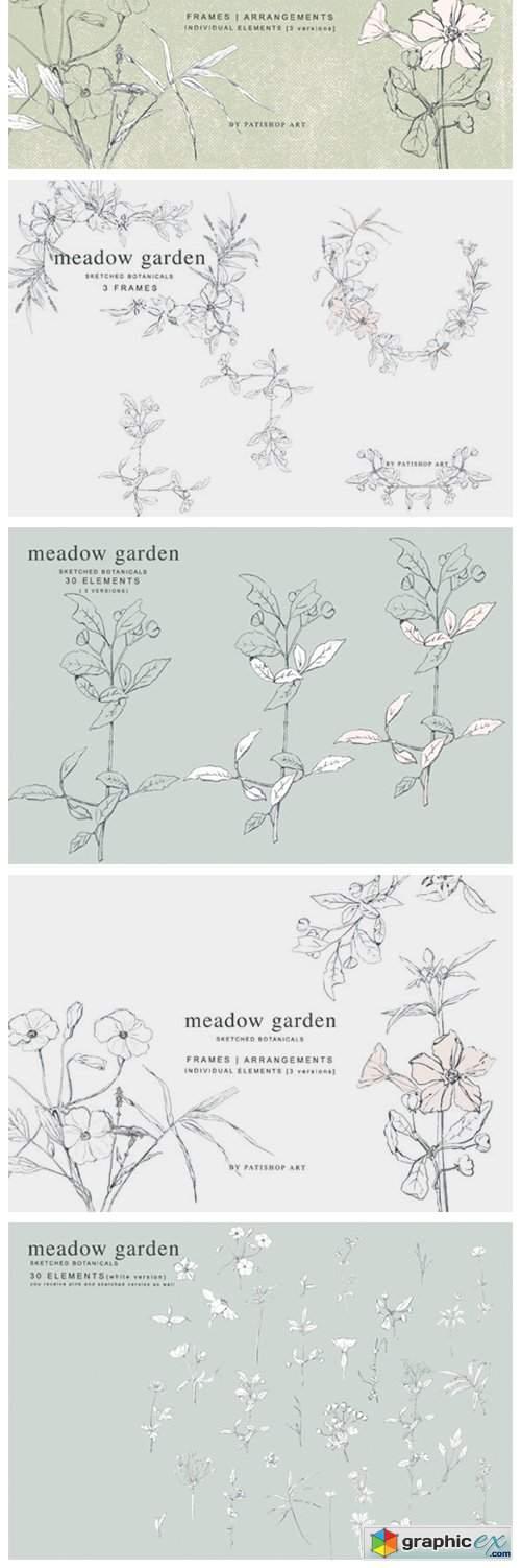 Pencil Sketched Botanicals Set