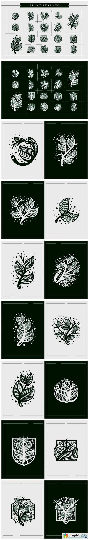 Plants Leafs