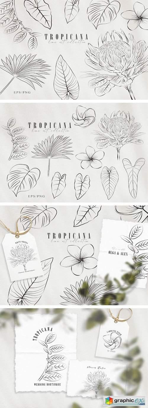 Line Art Tropical Plants Clipart Set