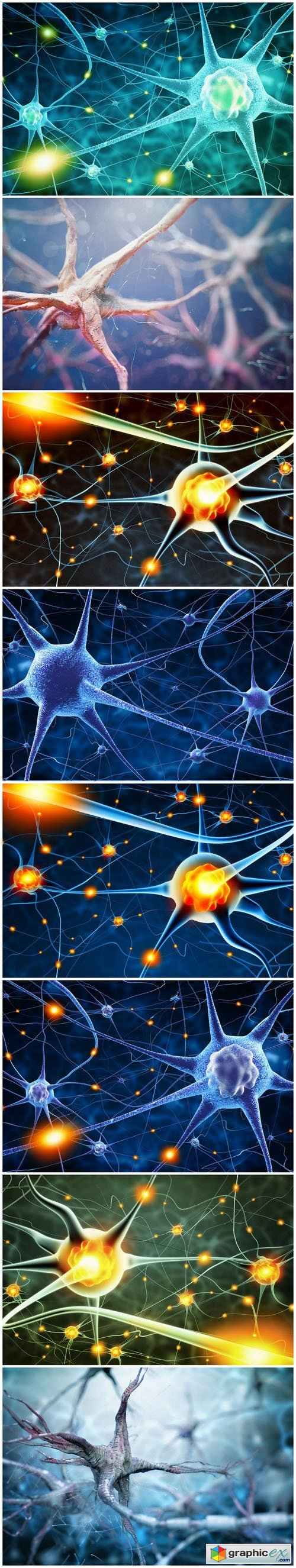 Active nerve cells - Set of 8xUHQ JPEG Professional Stock Images