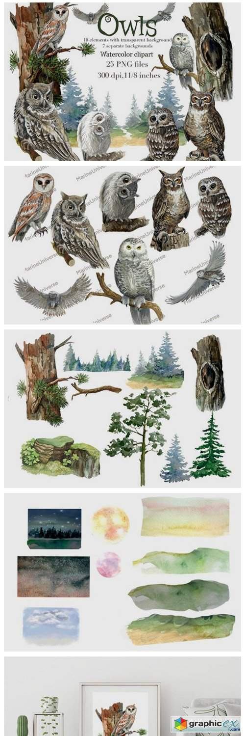 Owls in the Forest Watercolor Clipart