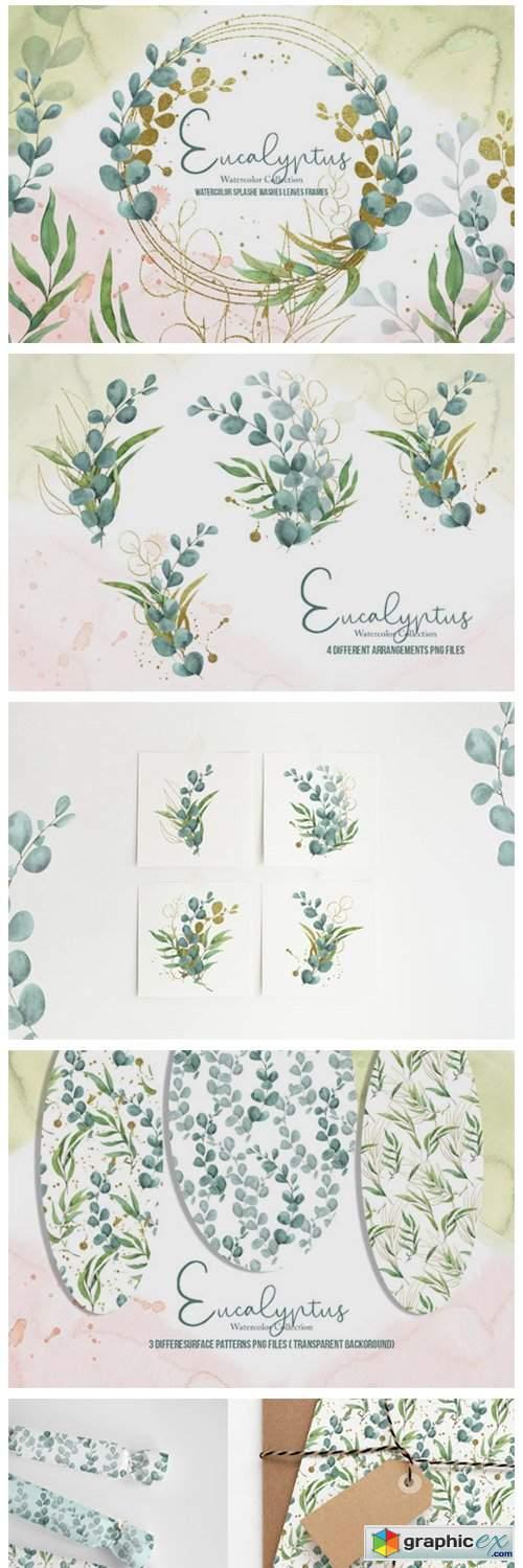 Eucalyptus Watercolor Collection