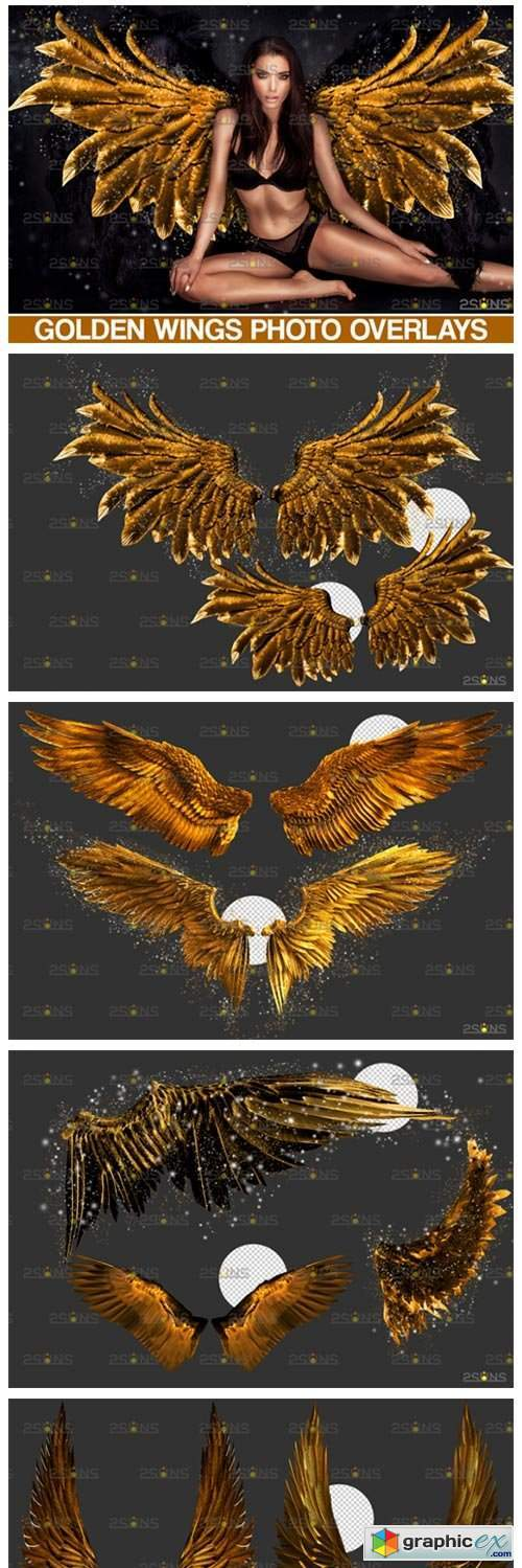Gold Fairy Wings Overlay