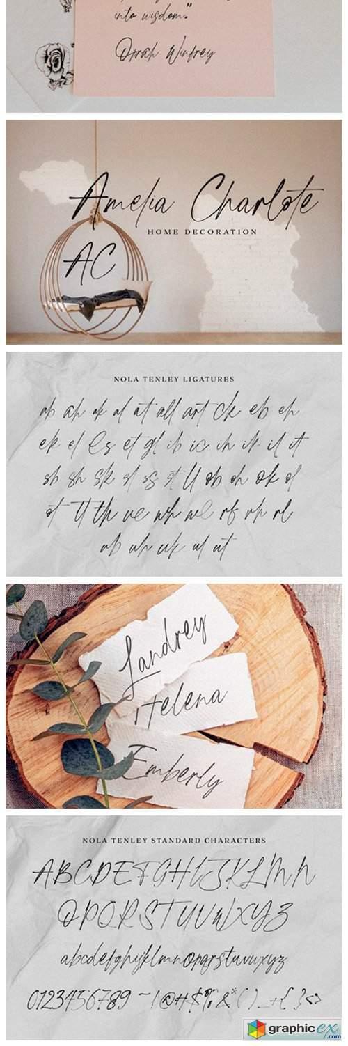 Nola Tenley Font