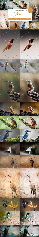 14 x Lightroom Presets, Birds