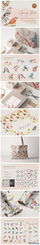 Spring Birds of Spring Watercolor