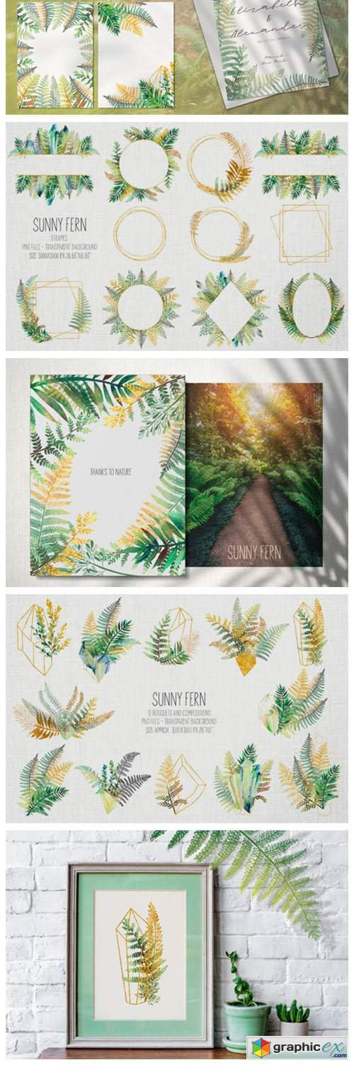 Sunny Fern Collection