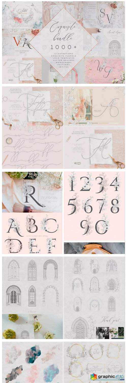 Exquisite Bundle. Graphic Elements. Logo