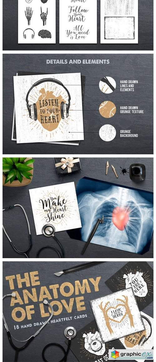 Anatomy of Love - Collection of Cards
