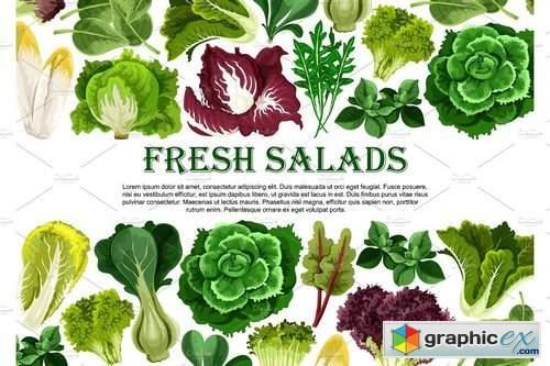 Salad leaf, vegetable greens banner border design 1956132