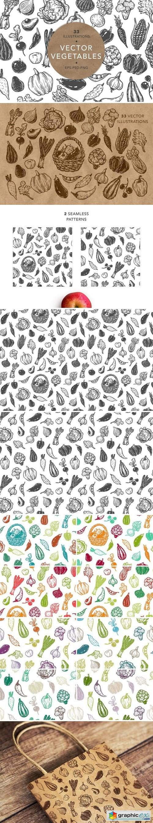 Vector Vegetables. Illustrations.