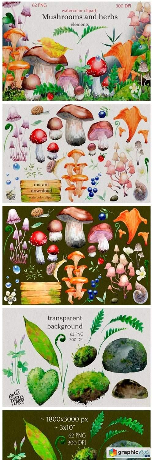Watercolor Cliparts of Mushrooms