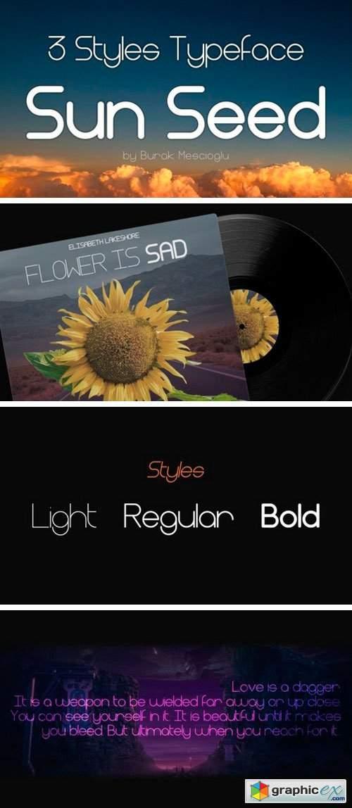 Sun Seed Sans Serif Font